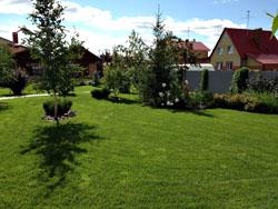 Дизайн сада Тюмень